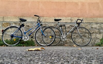 La ViaRhôna à vélo : à la découverte des berges du Rhône